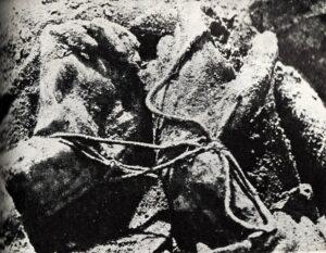 Hands tied on the victim's back (public domain)